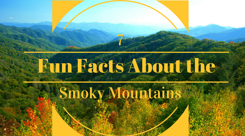 7 Fun Facts About the Smoky Mountains That Might Surprise You