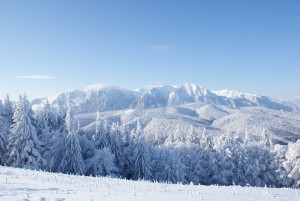 snow-blog-1