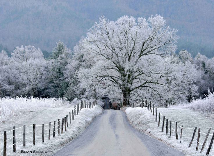 snow-blog-11