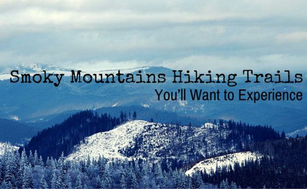 Smoky Mountains Hiking Trails You'll Want to Experience