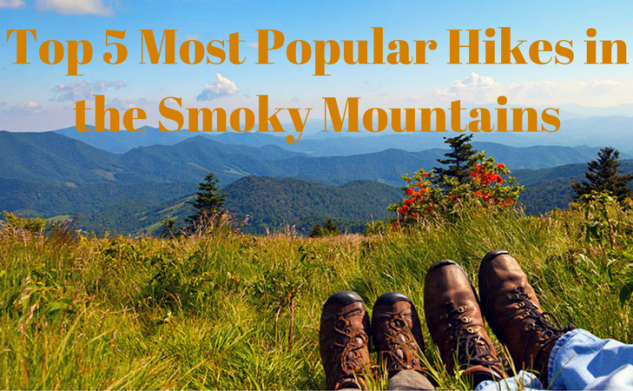 Top 5 Most Popular Hikes in the Smoky Mountains