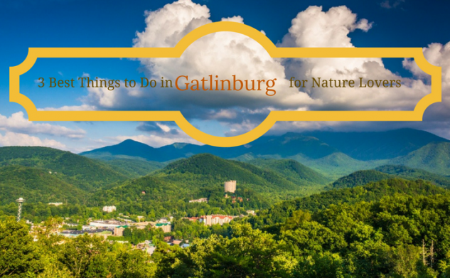 3 Best Things to Do in Gatlinburg for Nature Lovers