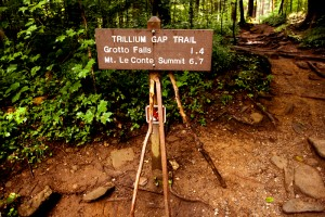 hiking-trillium-gap-to-brushy-mountain-smokies-2