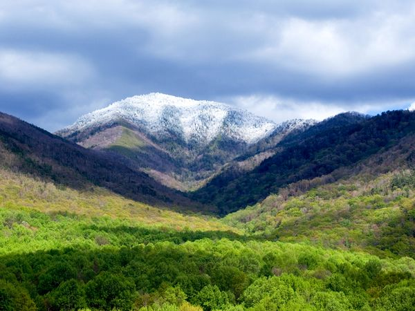 The Top 5 Highest Point in the Smoky Mountains - The All ...