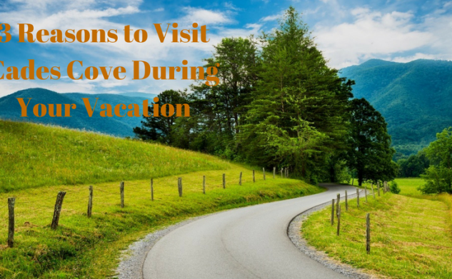 3 Reasons to Visit Cades Cove During Your Vacation