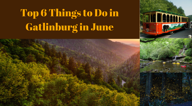 28 Gatlinburg Attractions Things To Do 17 Free