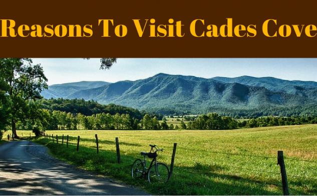 Reasons To Visit Cades Cove