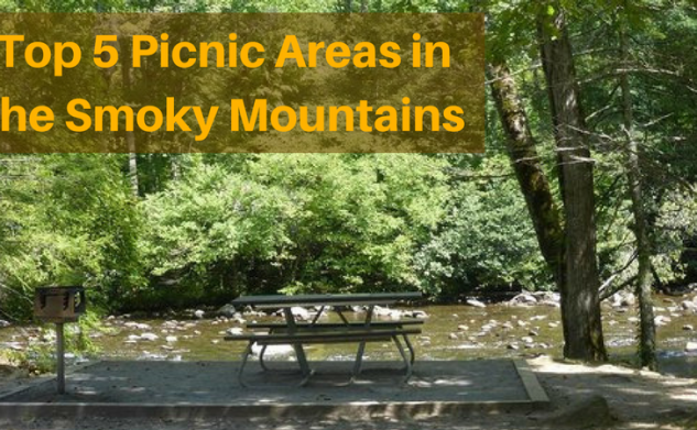 Top 5 Picnic Areas in the Smoky Mountains