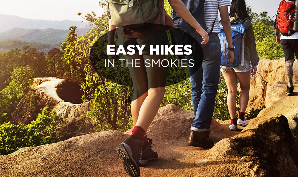 Easy Hikes in the Smoky Mountains