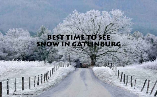 Best Times To See Snow in Gatlinburg