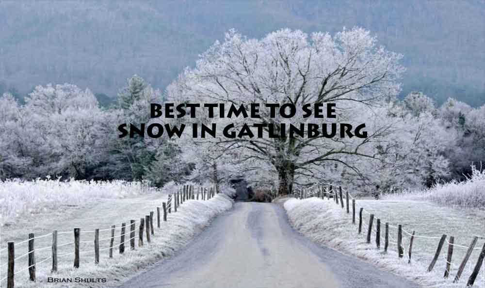Best Times To See Snow in Gatlinburg
