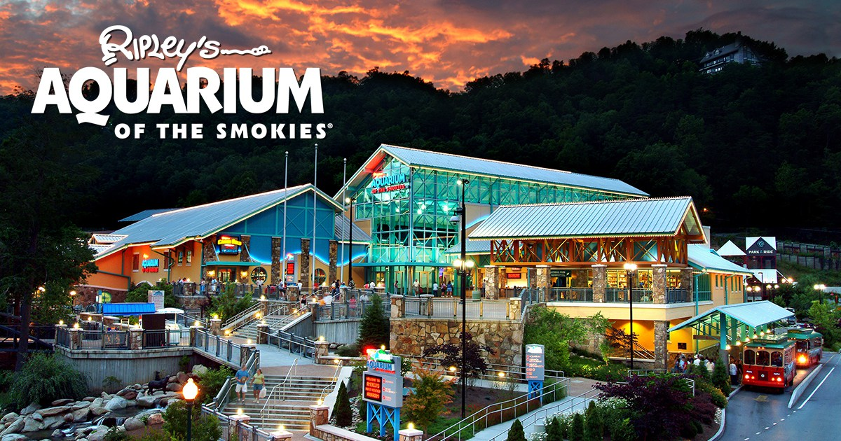 Ripley's Aquarium in the Smokies