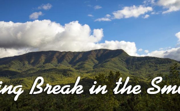 Live incredible experiences at the Smokies during Spring Break