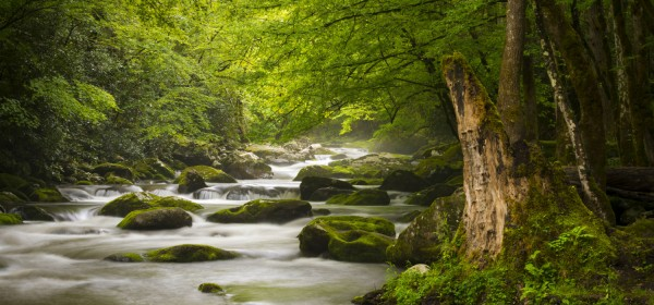 Peaceful-great-smoky-mountains-national-park-foggy-tremont-river-relaxing-nature-landscape-scenics-near-gatlinburg-tn