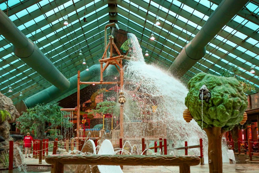 Wild Bear Falls Indoor Water Park